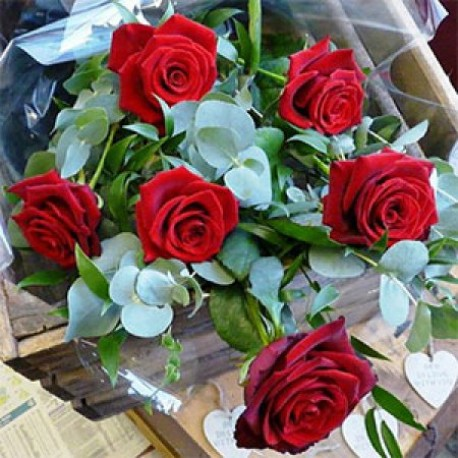 Half of dozen Red Roses